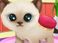 Красивые лапки: Щенки и котята